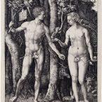 adam en eva Dürer