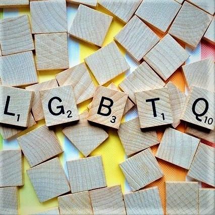 Onder Mediadoctoren 85, Queer media
