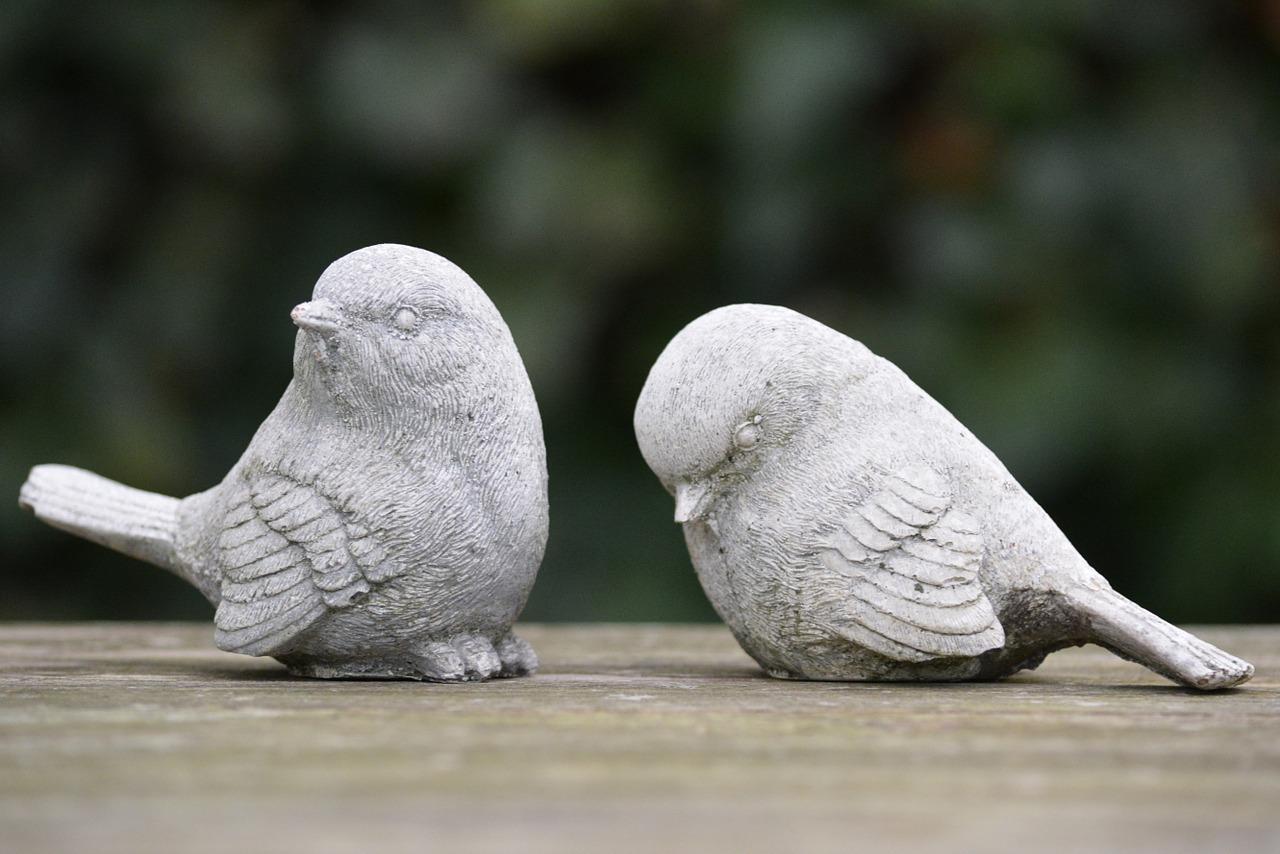 vogels afwijzen